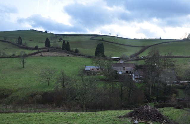 Taunton Deane : Hole Farm and countryside
