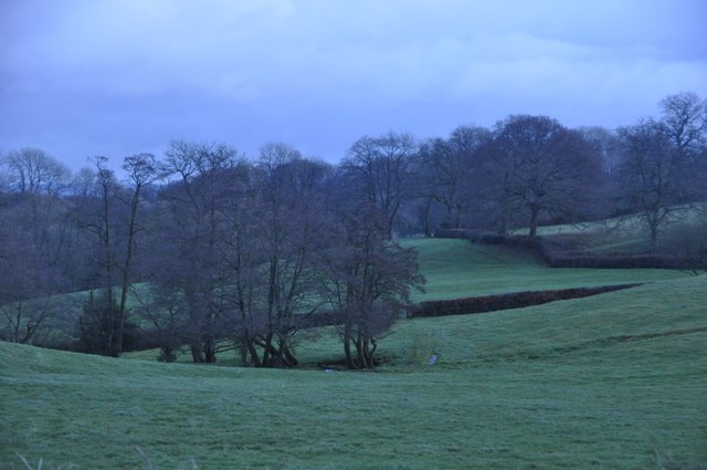 Mid Devon : Grassy Countryside