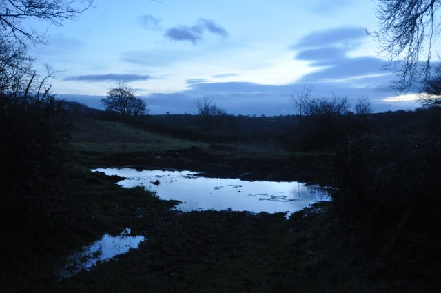 Mid Devon : Muddy Puddle