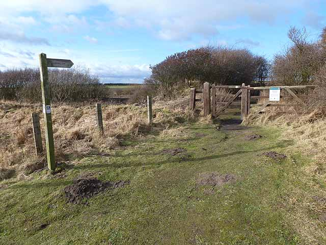 Southern entrance to Hauxley Nature Reserve