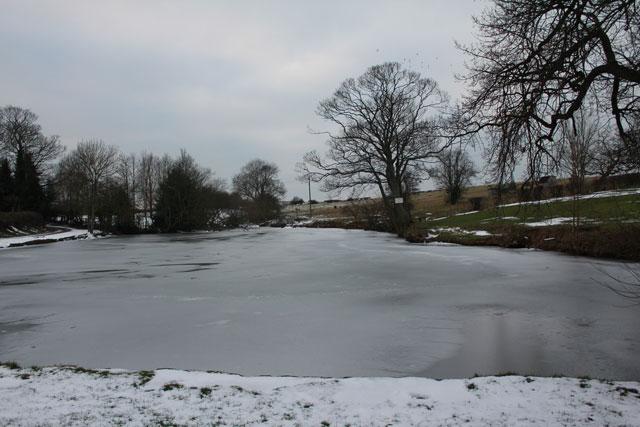 Fishing Pond Hardwick