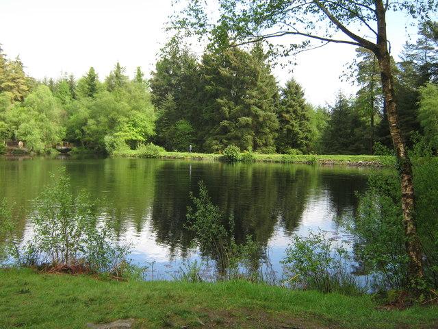 Bruntis Loch, looking east
