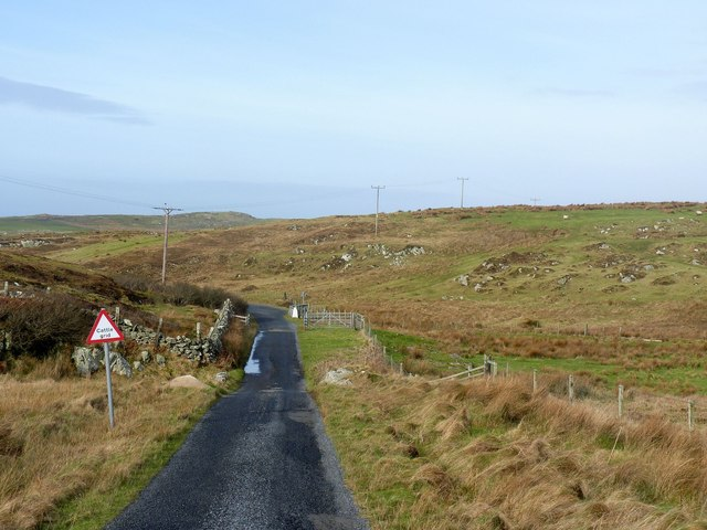 Approaching cattle grid near Cultoon, Islay