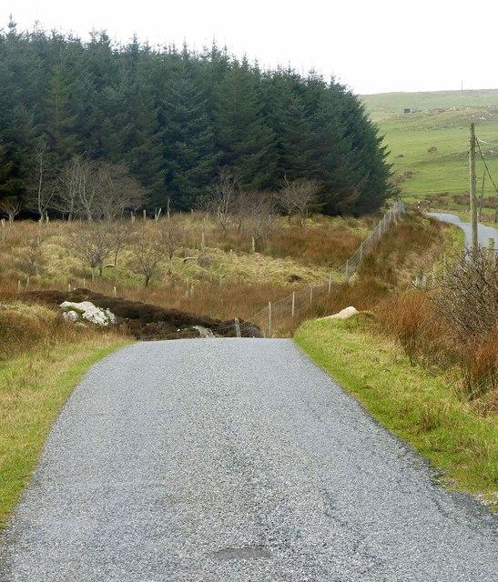 Road north-west past Olistadh Wood, Islay