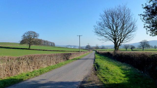 Road to Little Sarnesfield