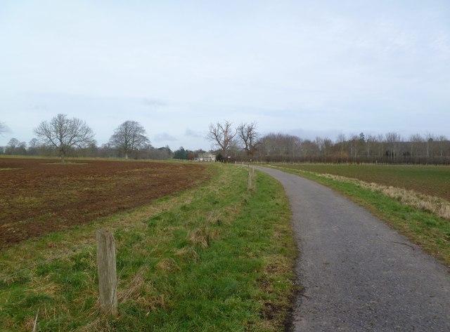 Moor Crichel, drive