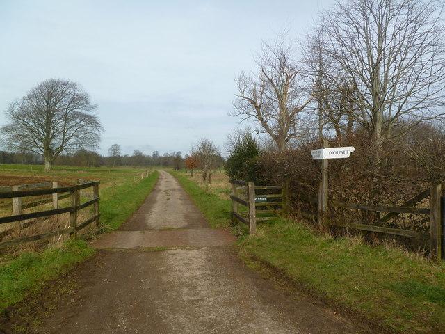Moor Crichel, signpost