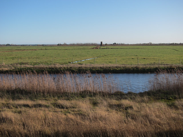 Limpenhoe Marshes
