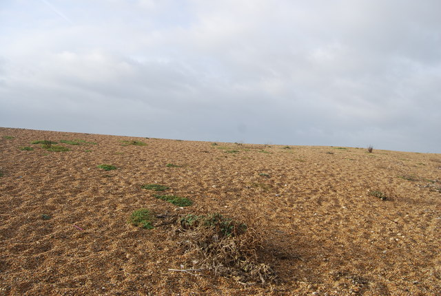 Part of Chesil Beach