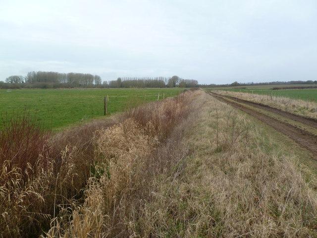 Chalbury, ditch