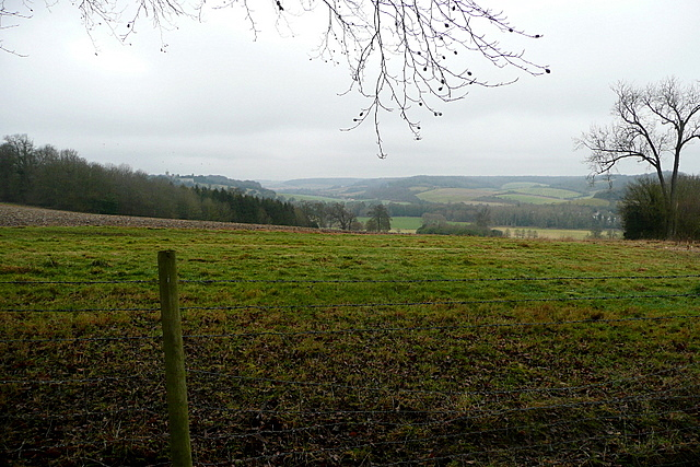 View from Toweridge Lane