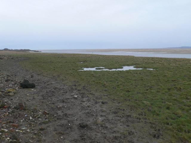 Saltmarshes by the Dee near Bagillt