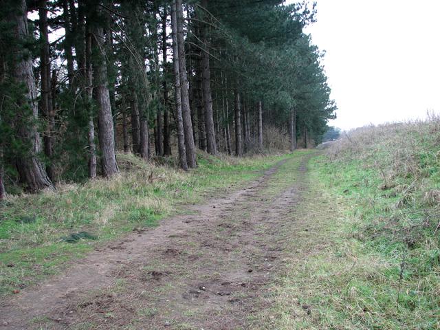 Public footpath past Waldringfield quarry