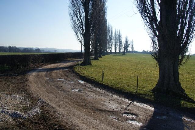 Track to Plashes Farm