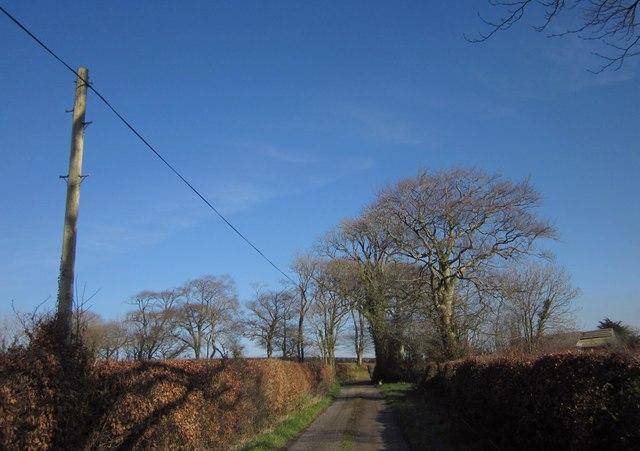Lane to Pinnacle
