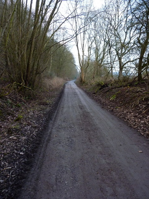 The former GWR, now NCN45, near Linley Halt