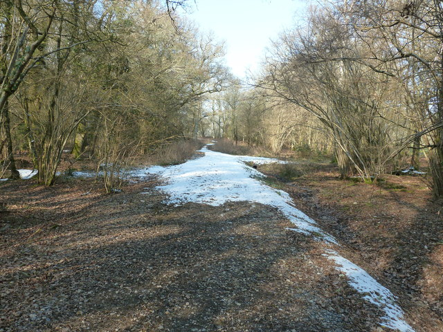 Two years on from repair to bridleway