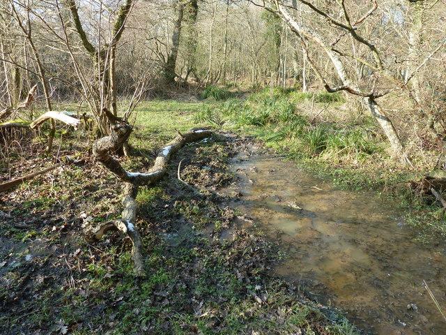 Footpath 2510 to Jessops Farm