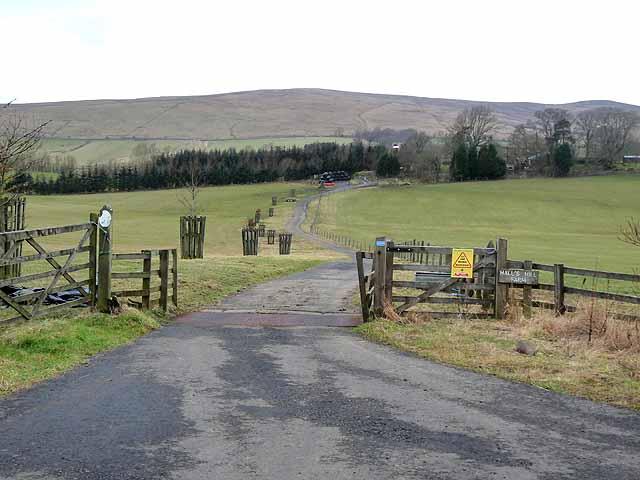 Driveway to Halls Hill Farm