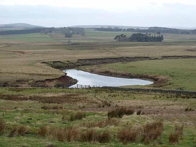 Meander on the River Rede