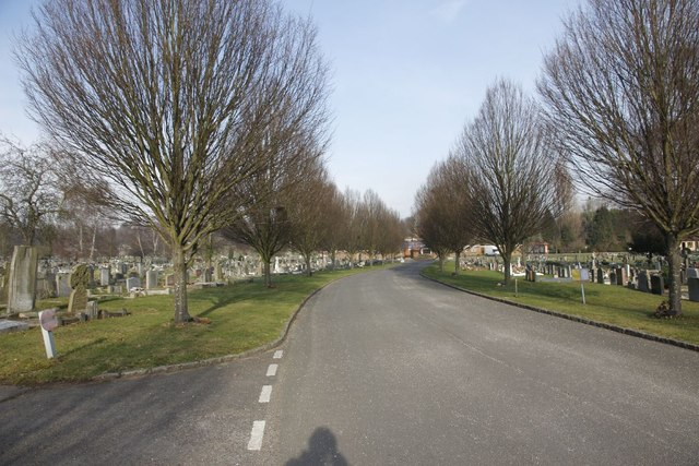 Road through the Cemetery