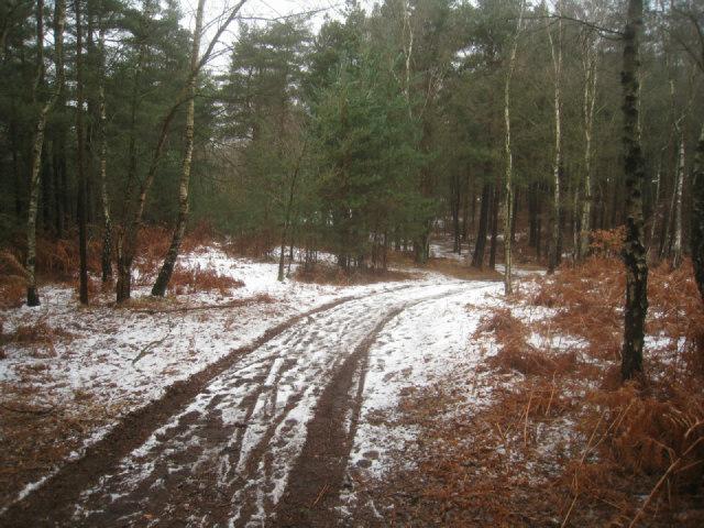 Track down Pyestock Hill