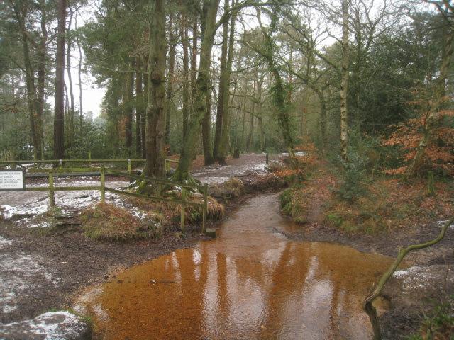 Mineral rich waters of Gelvert Stream