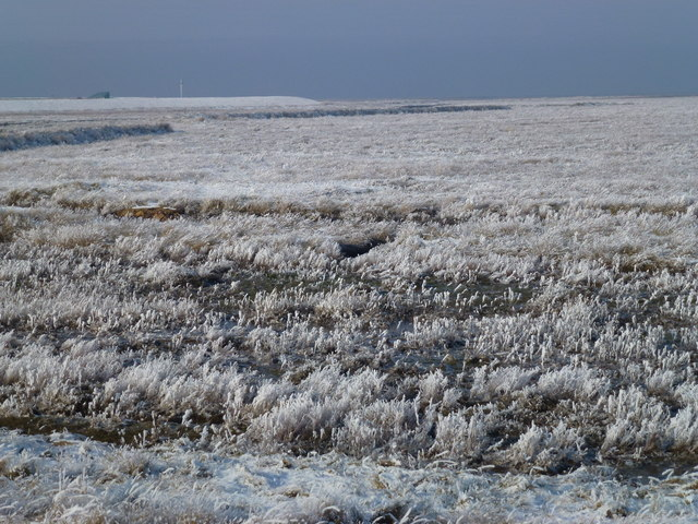 The Wash coast in winter - Hoar frost on the marsh