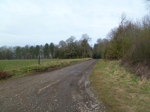 Moor Crichel, farm road