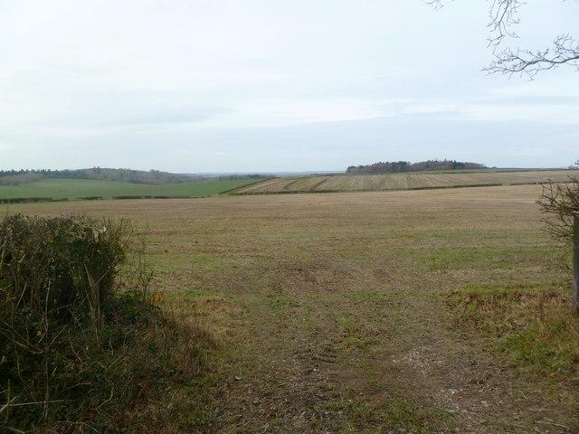 Moor Crichel, arable land