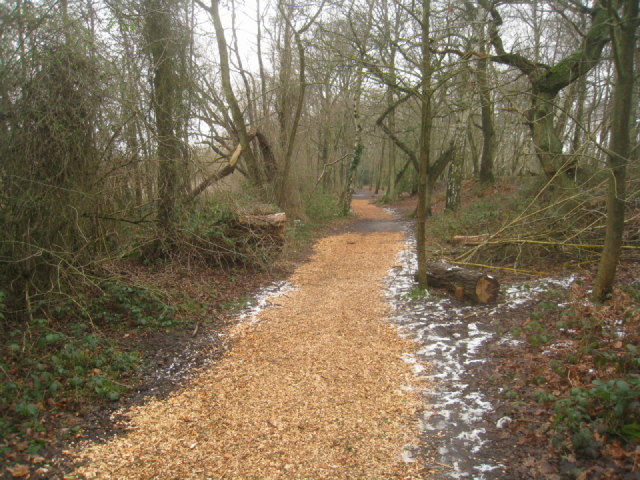 Good use of wood chippings