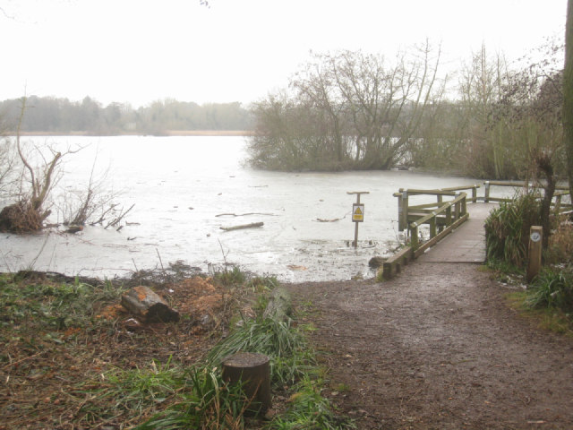 Viewing deck - Fleet Pond