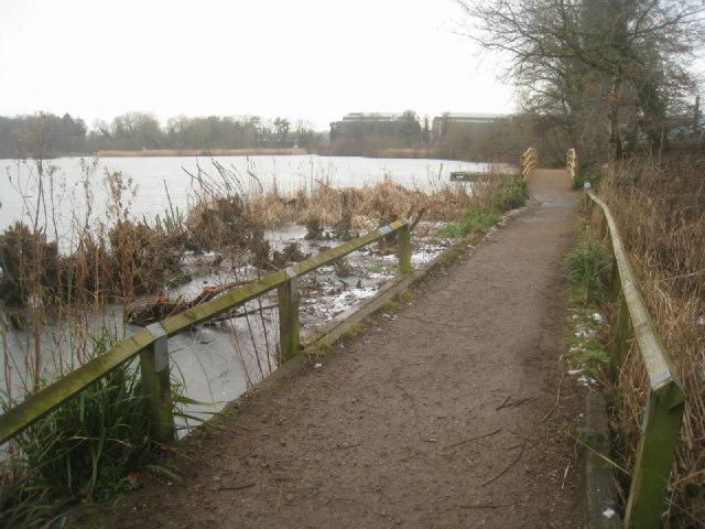 Fleet Pond - north shore