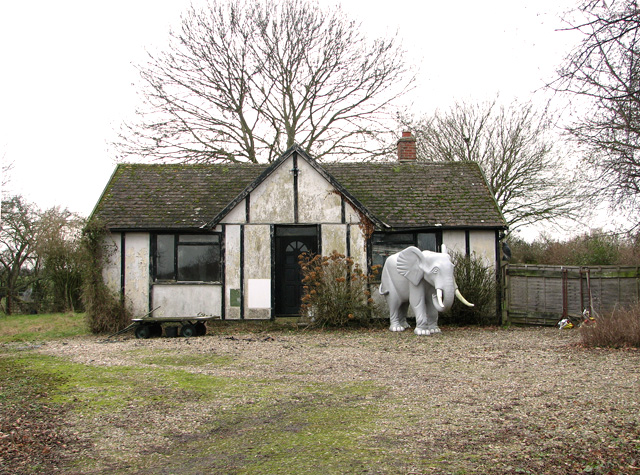 The elephant cottage, Shadingfield