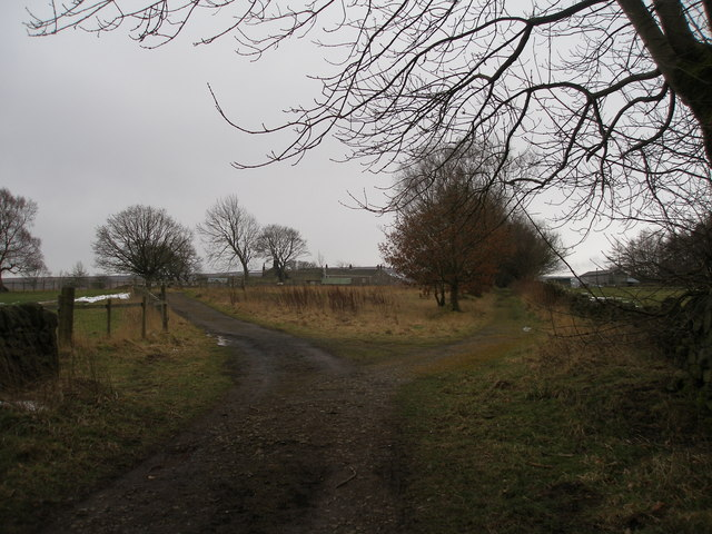 Parting of the ways near Midhope Cliff