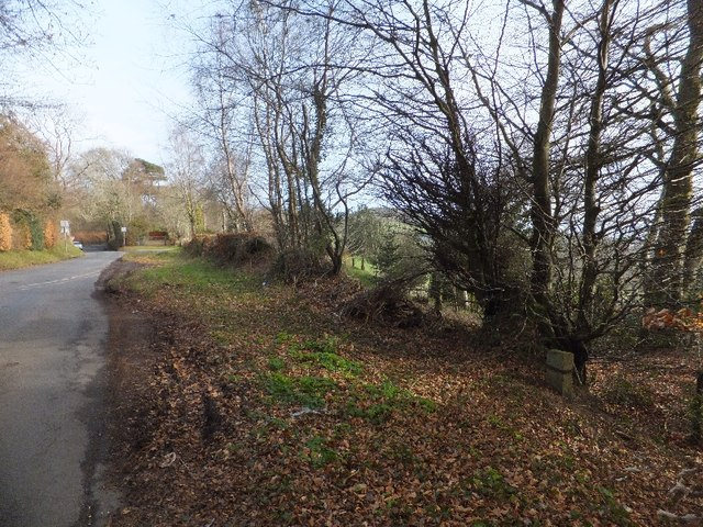 Woodland road junction and boundary stone