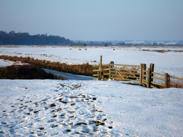 Fields at Pett Level