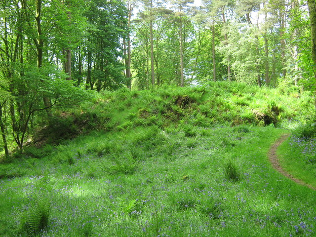 Cally Motte looking south west