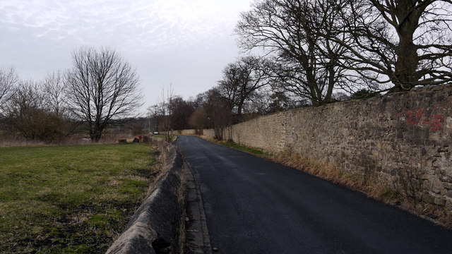 Wall and road bounding grounds of Auckland Castle