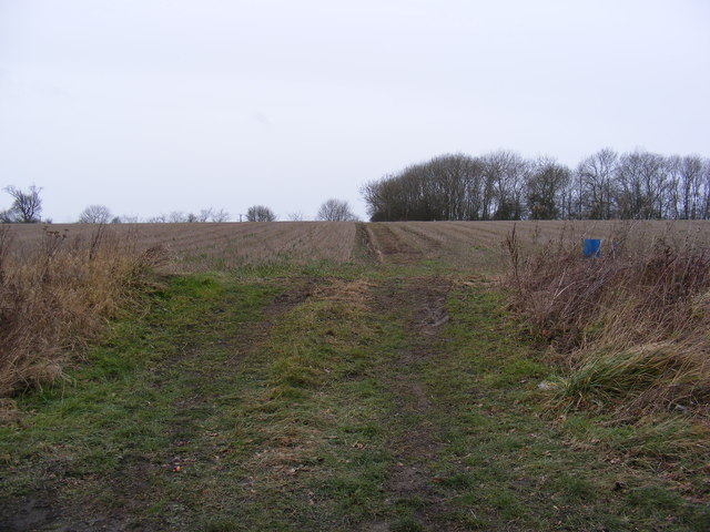 Footpath to Ubbeston Hall