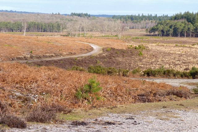 View from the Rising Land of Markway Inclosure