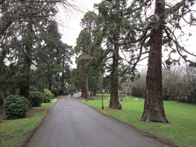 The driveway leading to the Botolph Arms