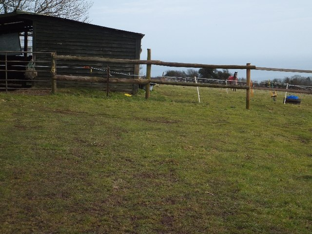 Stable and horse by Higher Woodway Road