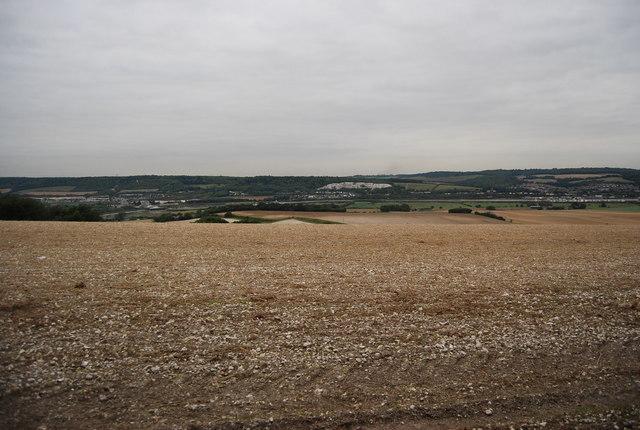 Chalk farmland