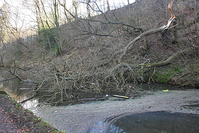 Canal Obstruction