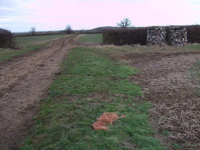 Farm track near Bydemill Farm