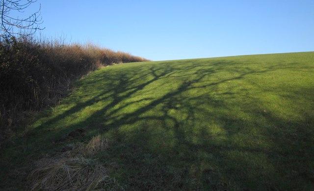 Path across the shadows near Bradaford
