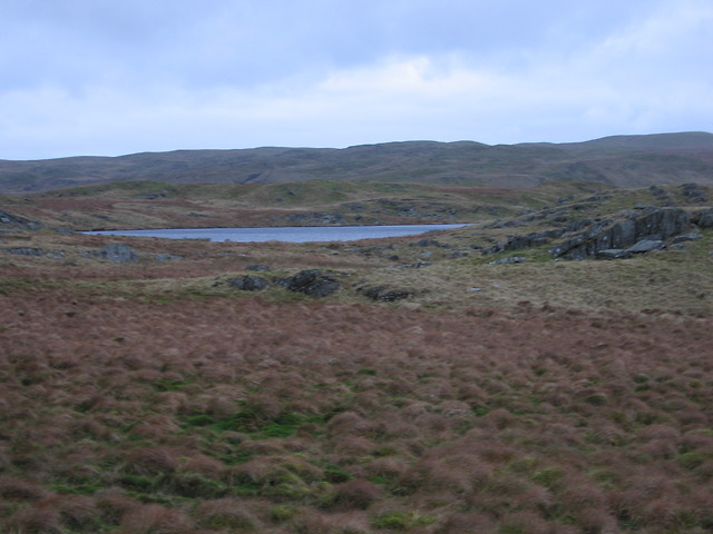 Boggy moorland south of Llyn Hir