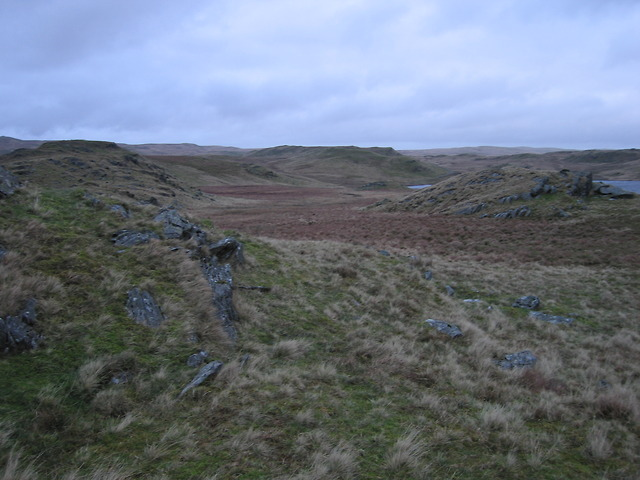 Moorland west of Llyn Egnant