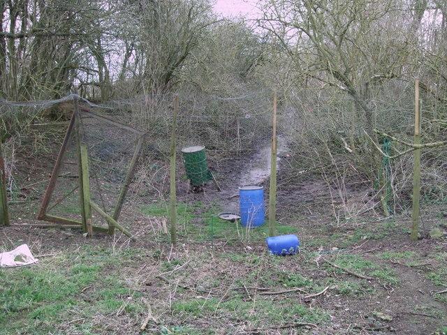 Course of old canal, near Dudgrove Farm